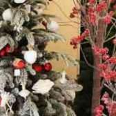 Глориоза, салон квітів і подарунків, адреса місця розташування: свердловська область, місто єкатеринбург, мамина-сибіряка, 193, сфера діяльності організації належить розділу нашого довідника
