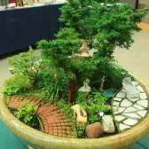 Мініатюрний сад в квітковому горщику
