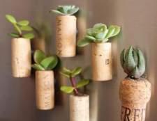 Квіткова композиція з пробок і кімнатних рослин
