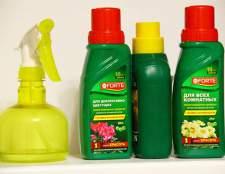 Скарбничка порад: як підгодовувати кімнатні рослини