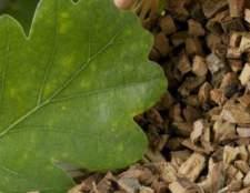 Кора дуба - природний засіб для лікування діареї