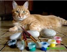 Кот-квітникар: розпис по каменю