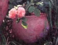 Основні стилі планування квітника з трояндами - види розарію