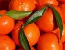 Рід цитрусових фруктів