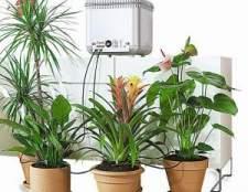 Системи автоматичного поливу для кімнатних рослин